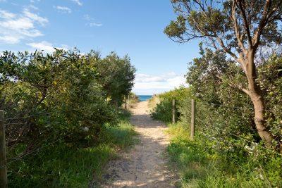 Beach-Track