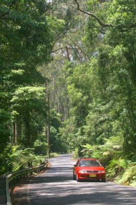 Resized-JAMBEROO-MOUNTAIN-ROAD-from-Jamberoo-Mountain