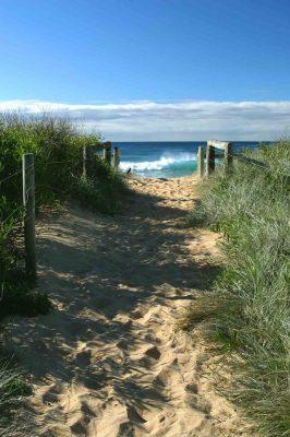 Werri-Beach path